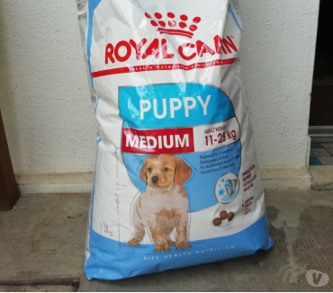 Photos Vivastreet Croquette puppy royal Canin