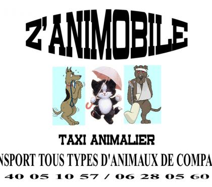 Photos Vivastreet Z 'ANIMOBILE Taxi animalier Gironde 33 Begles