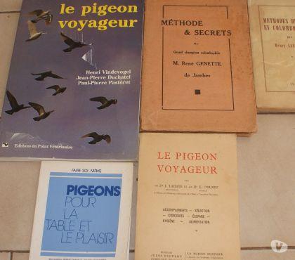 Photos Vivastreet rares livres pigeons voyageurs surtout le
