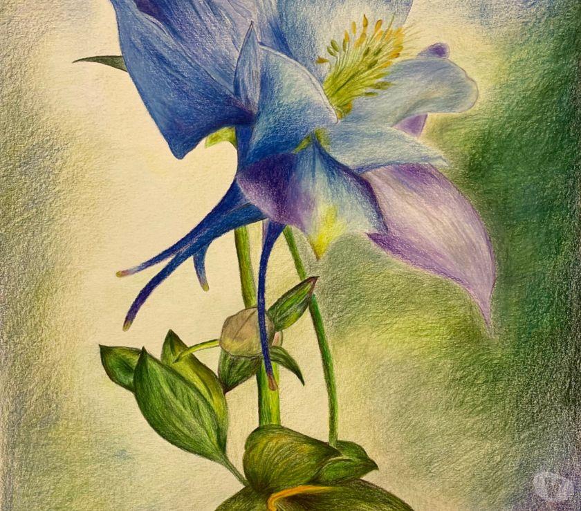 Photos Vivastreet Cours de dessin, de peinture, pastel et aquarelle