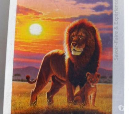 Photos Vivastreet Puzzle MB décors Lion 1000 pièces modèle neuf ancien
