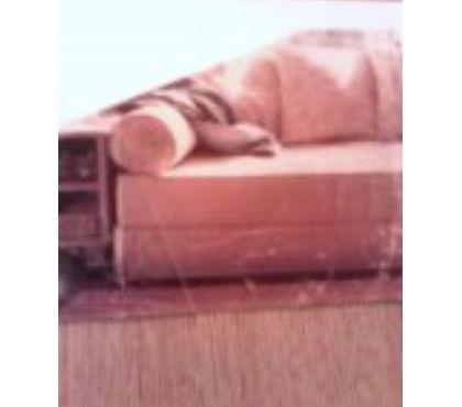 Photos Vivastreet Canapé lit 1 personne BAISSé à 150€ cause travx Faire offre