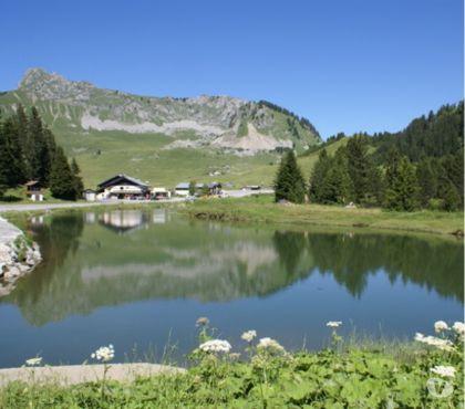 Photos Vivastreet A vous les randonnées à 1500 m d'altitude !!!