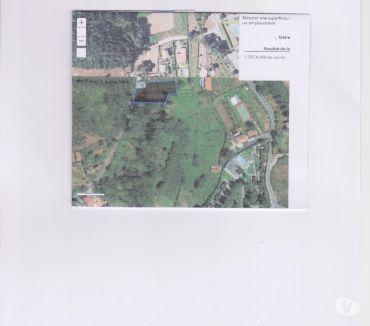 Photos Vivastreet TERRAIN CONSTRUCTIBLE 1600m2 à VILAR DE MOUROS