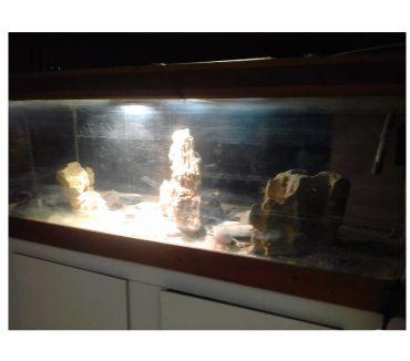 Photos Vivastreet Aquarium 700l