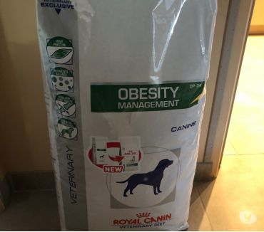 Photos Vivastreet Croquettes obesity royal canin