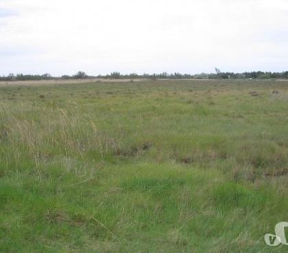 Photos Vivastreet Beau terrain agricole,1.Ha, 1.5km mer.