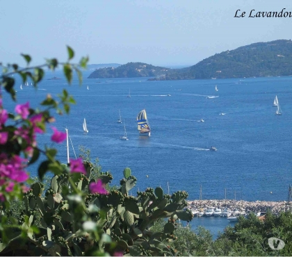 Photos Vivastreet location vacances -le lavandou- vue panoramique mer