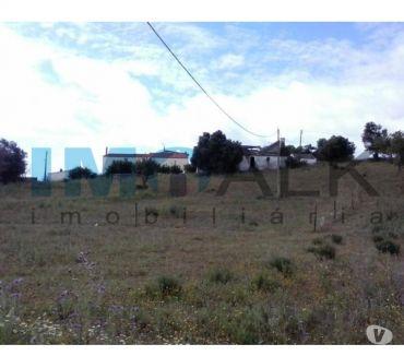 Photos Vivastreet Terrain mixte avec 7680m2 à Brancanes près de Olhão T-841