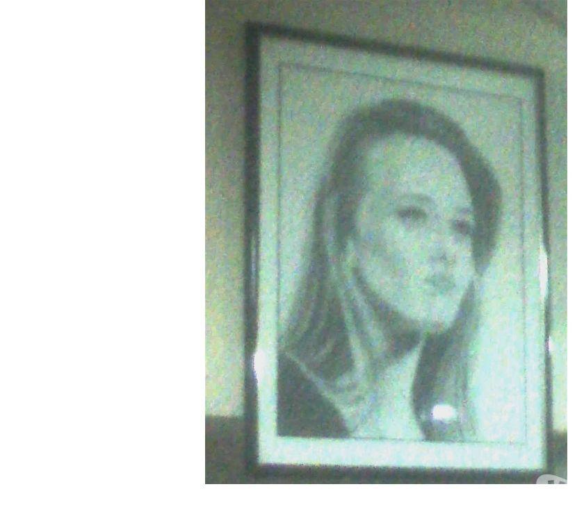 Photos Vivastreet Portrait de vanessa paradis dessiné a la main