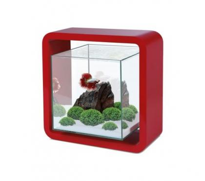 Photos Vivastreet Aquarium Nano Cube 5L