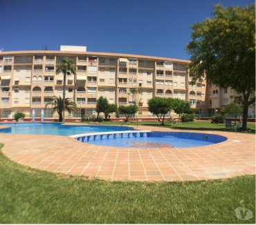 Photos Vivastreet Appartement atico,torrevieja,alicante avec,piscineet pelouse