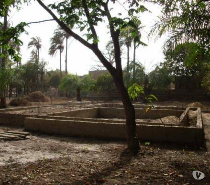 Photos Vivastreet TERRAIN SENEGAL