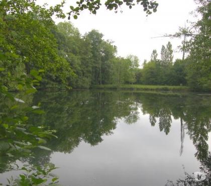 Photos Vivastreet Locations d'étangs pour la pêche