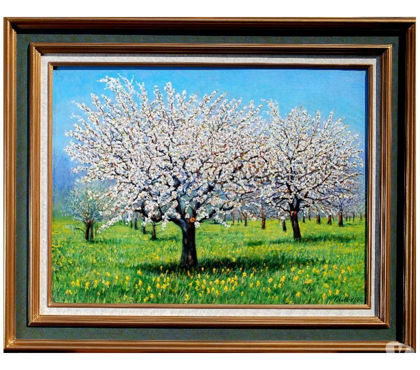 Photos Vivastreet Les cerisiers en fleurs à Barr.#Glotz 380€
