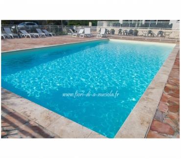 Photos Vivastreet Villa T3 climatisée piscine chauffée les pieds dans l'eau