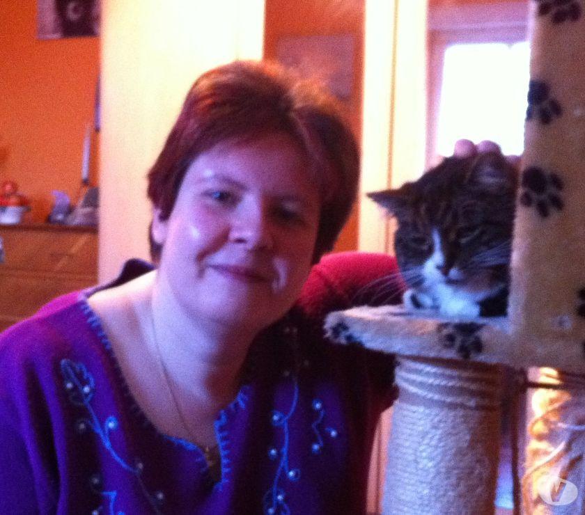 Photos Vivastreet Garde d'animaux à domicile, Alimentation et Transport