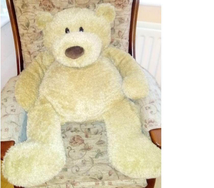 Photos for Large Brown Teddy Bear