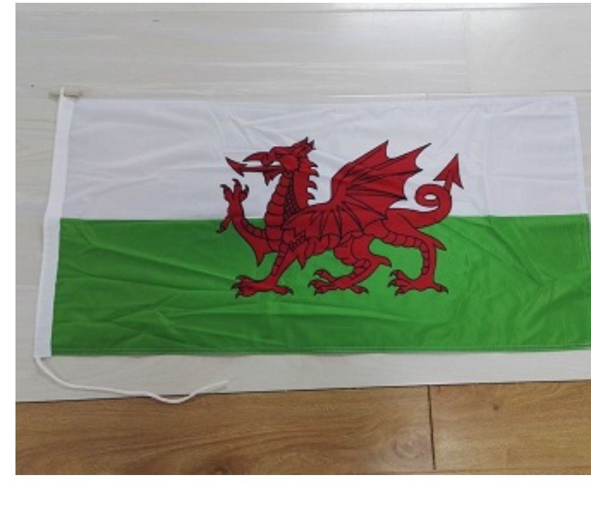 Miscellaneous East Sussex Sandown - Photos for Welsh Ensign Printed Flag 36x18