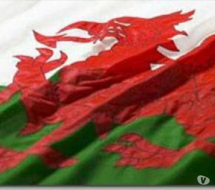 Photos for High Quality Sewn Welsh Flags