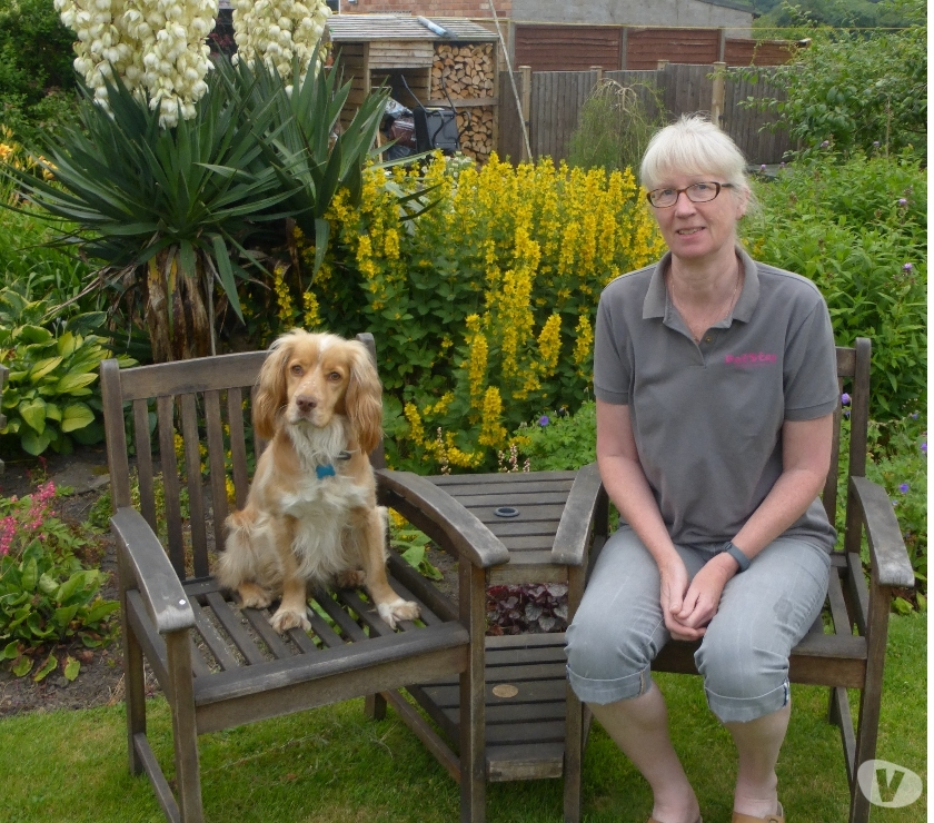 Other Services Leicestershire Leicester - Photos for PetStay Dog Boarding, Alternative to Kennels