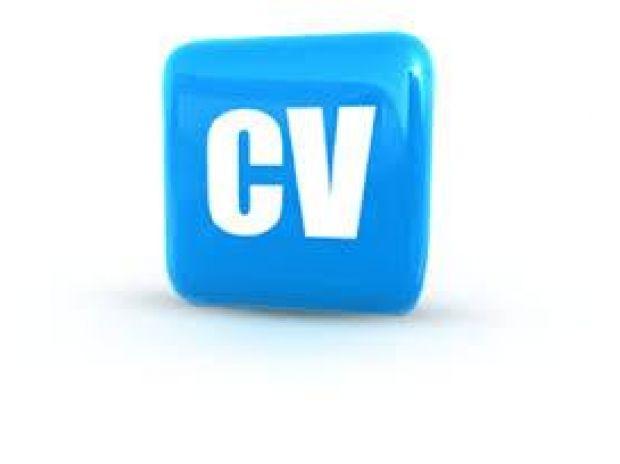 Professional cv writing service ireland