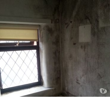 Photos for mould and condensation