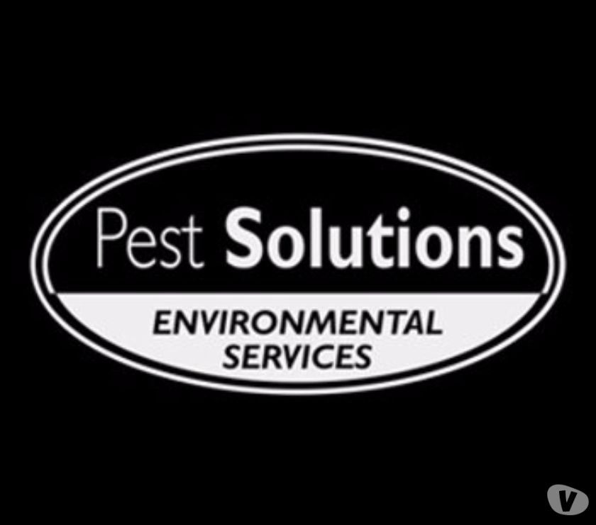 Other Services Glasgow Newlands - G43 - Photos for Pest Control Glasgow | BPCA | FREE Survey | Pest Solutions