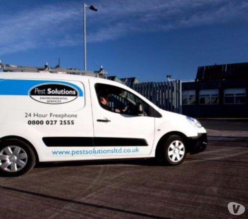 Photos for Pest Control Glasgow | BPCA | FREE Survey | Pest Solutions