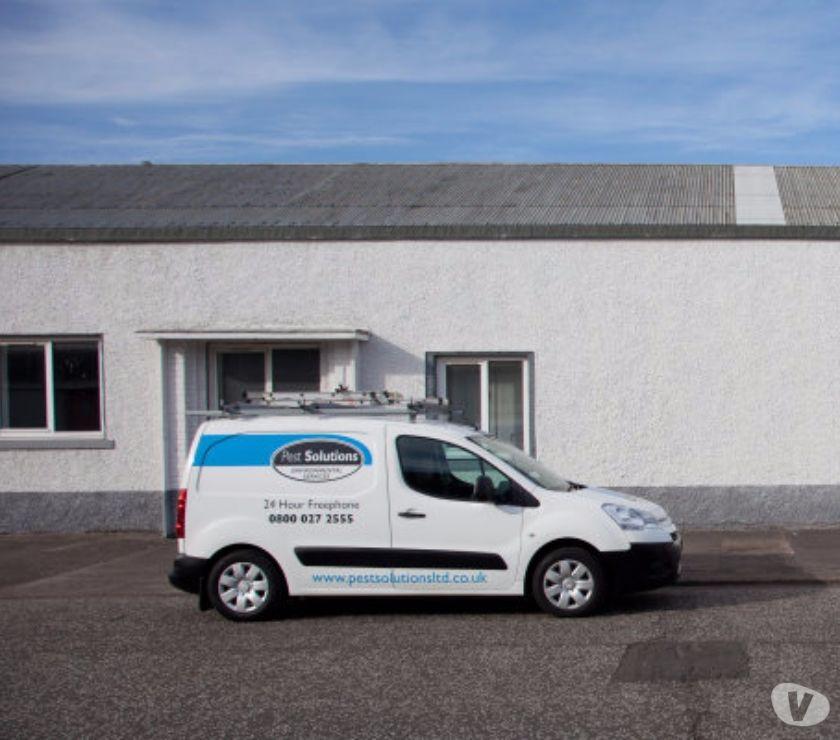 Photos for Pest Control Aberdeen   BPCA   FREE Survey   Pest Solutions