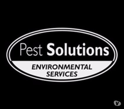 Photos for Pest Control Aberdeen | BPCA | FREE Survey | Pest Solutions