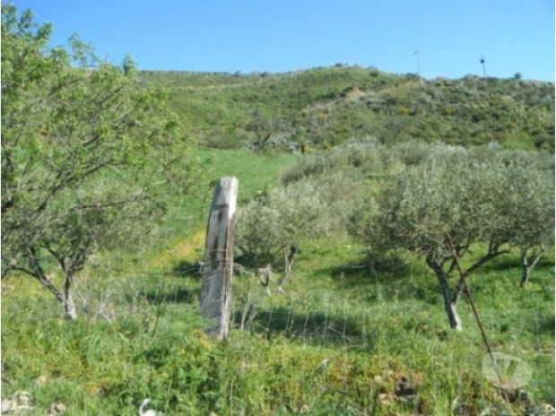 Land For Sale Abroad - Photos for sh 388 Land plot, Caccamo