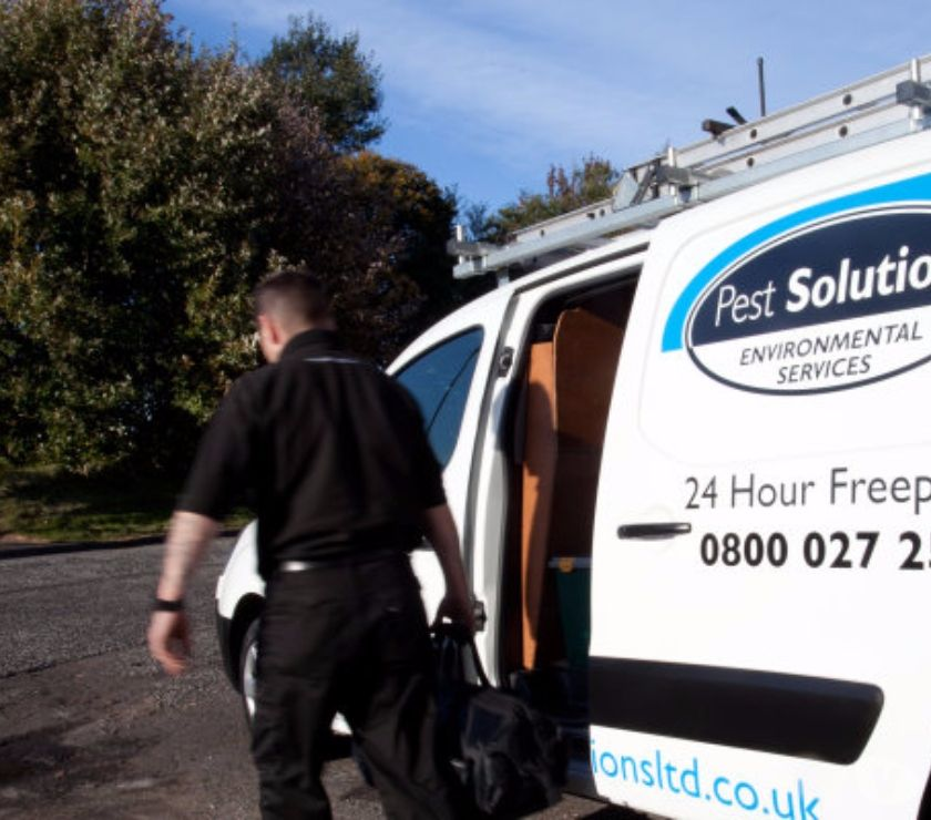Photos for Pest Control Edinburgh | BPCA | FREE Survey | Pest Solutions