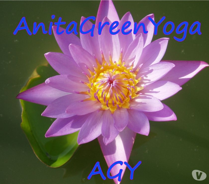 sports coach Kent Bromley - Photos for AnitaGreenYoga - Live Online Hatha Yoga Classes with Zoom