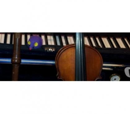 Photos for Violin Lessons in Newark, Notts