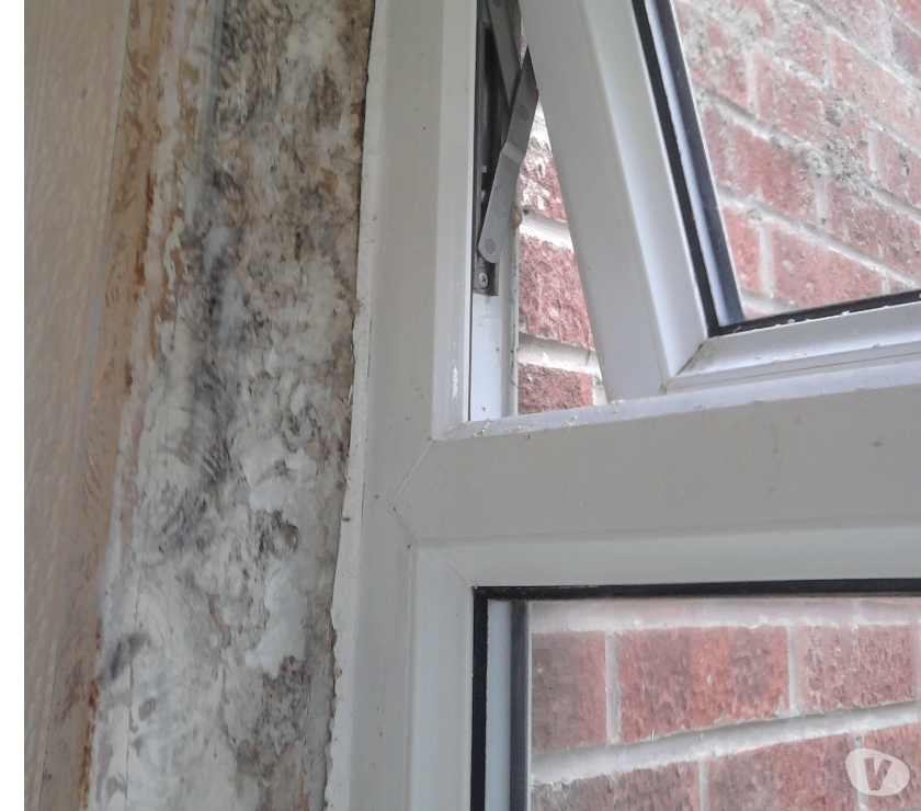 Find a tradesman Manchester County Salford - Photos for black mould specialist