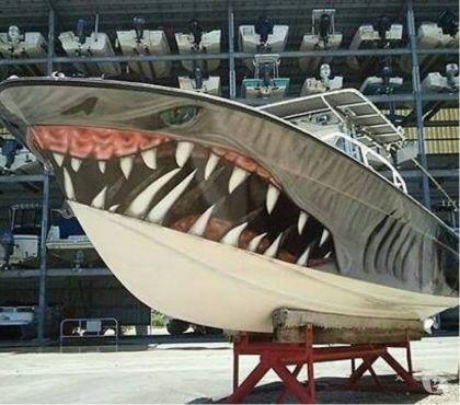 Foto di Vivastreet.it barche gommoni affari liberasi capannone privati cede usati