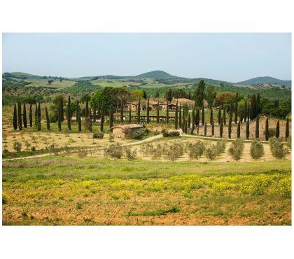 Foto di Vivastreet.it Toscana - Capalbio . Casali - Ospitalià