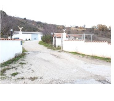 Foto di Vivastreet.it Capannone con 3 ettari di terreno