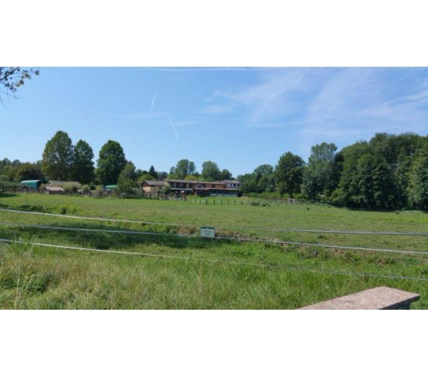 Foto di Vivastreet.it Agriturismo - Allevamenti in provincia di Varese