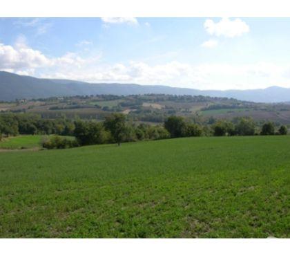 Foto di Vivastreet.it Rif. 409 terreno con rudere vic Collavalenza di Todi
