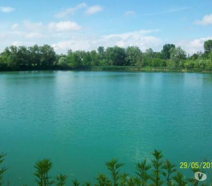 Foto di Vivastreet.it Lago ideale pesca sportiva 85.000 mq e capannone 280 mq