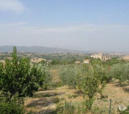 Foto di Vivastreet.it Rif. 405 terreno edificabile a Barattano di Gualdo Cattaneo