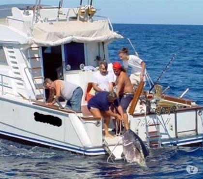 Foto di Vivastreet.it barca pesca wa cabin open usate