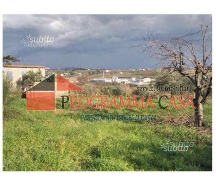 Foto di Vivastreet.it ARDEA casa RUSTICO 80 MQ SANATO terreno agricolo 7500 M