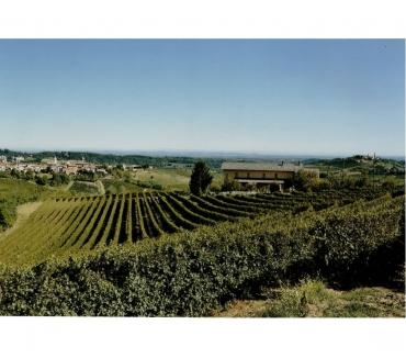 Foto di Vivastreet.it Azienda Agricola - Nizza Monferrato