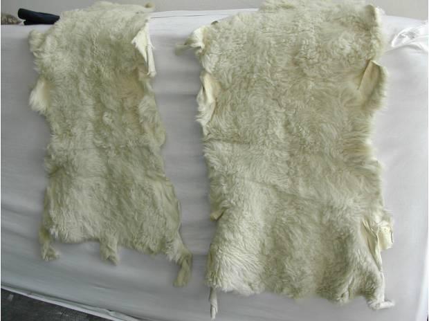 2 Tappeti di pelle di pecora scendiletto Magenta ...