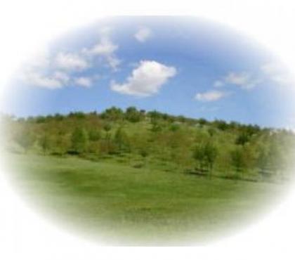 Foto di Vivastreet.it Podere di 20 ettari con casale di 420 mq