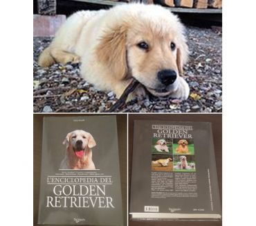 Foto di Vivastreet.it L'ENCICLOPEDIA DEL GOLDEN RETRIEVER, A. Pandolfi, De Vecchi