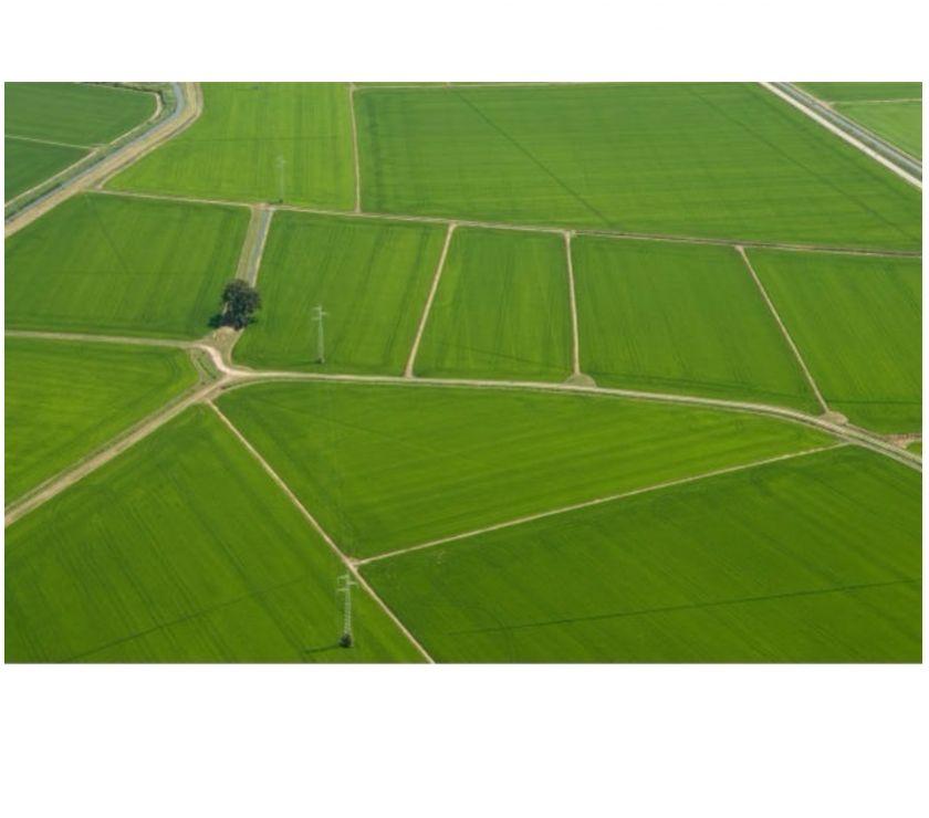 Foto di Vivastreet.it Azienda Agricola Sud Milano